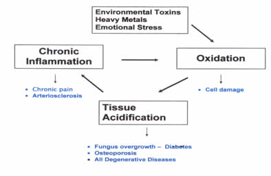 symptoms of heavy metal toxicity in the body)